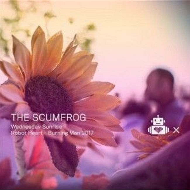 The Scumfrog - Robot Heart - 10 Year Anniversary - Burning Man 2017