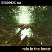 sound 02 rain in the forest