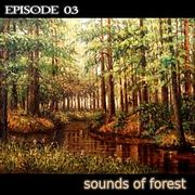 sound 03 sounds of forest