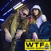 HUGEL ft. Amber Van Day - WTF (Amice Remix)