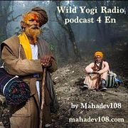 Wild Yogi Radio podcast 4 En (4)