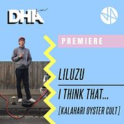 Premiere: Liluzu - I Think That… [Kalahari Oyster Cult]