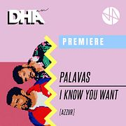 Premiere: Palavas - I Know You Want [AZZUR]